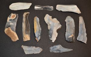 An excellent value group of 11 x assorted Mesolithic flint blades, knives and tools from Lackford, Suffolk. SOLD